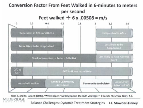 Gait Speed Test