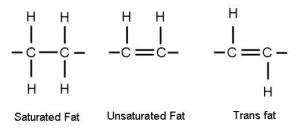 ProInflammatory Fats