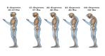 Spine position