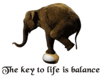 The Key To Life Is Balance