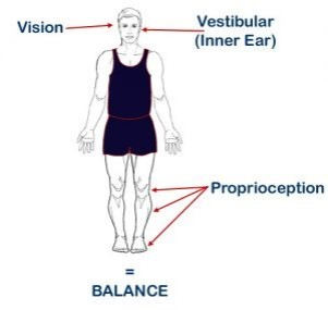 Balance sensory integration